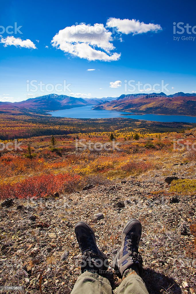 Hiker in fall-colored tundra royalty-free stock photo