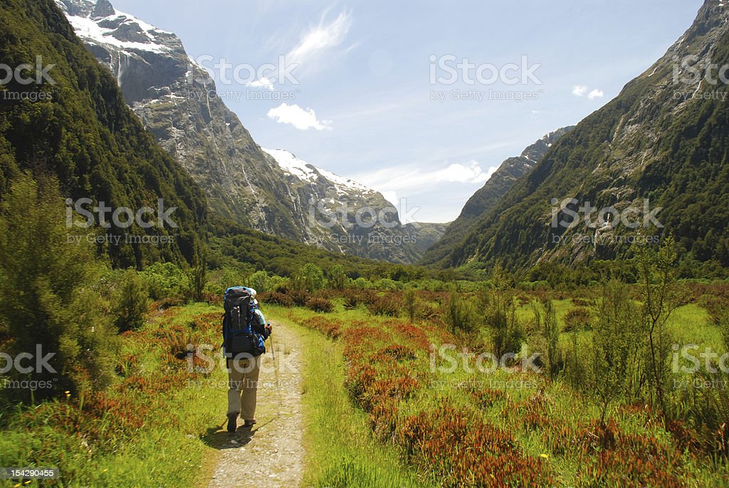 Hiker in Milford Track stock photo