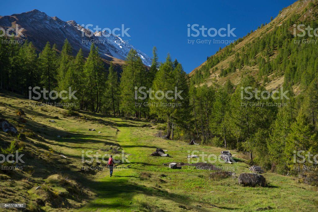 Hiker in Swiss Alps stock photo