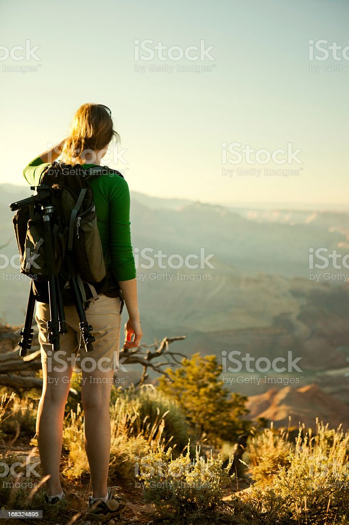 Hiker Looking Out Over Grand Canyon royalty-free stock photo