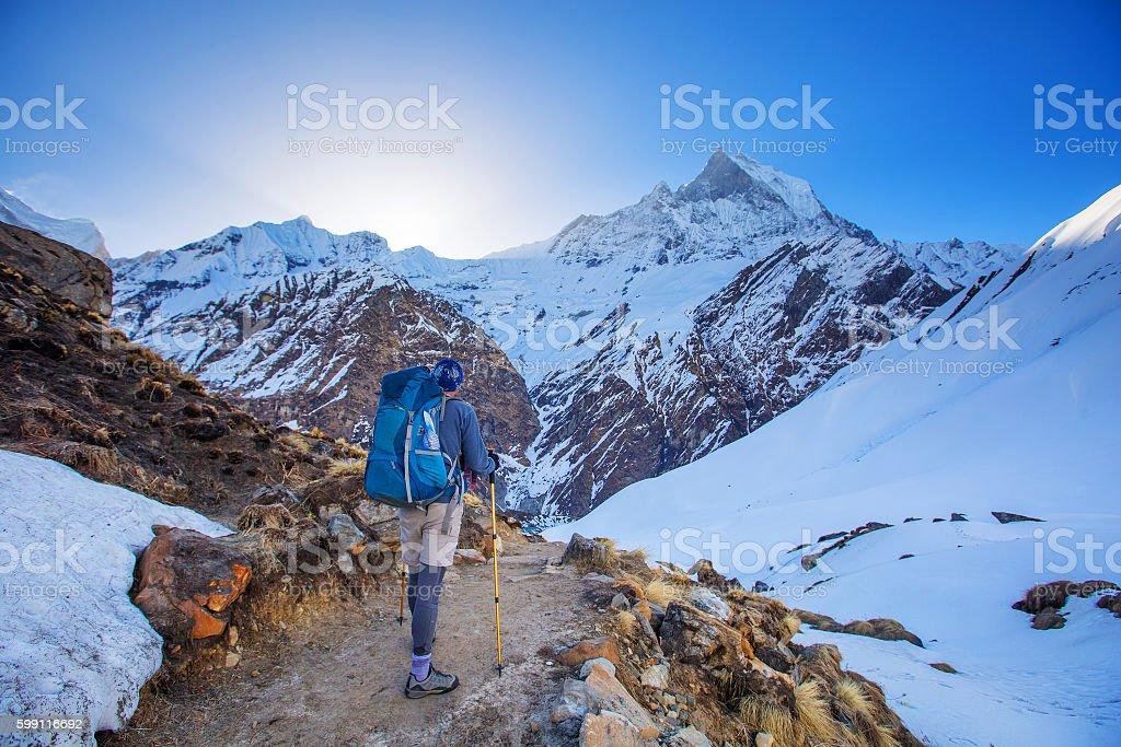 Hiker on the trek in Himalayas, Annapurna valley, Nepal stock photo