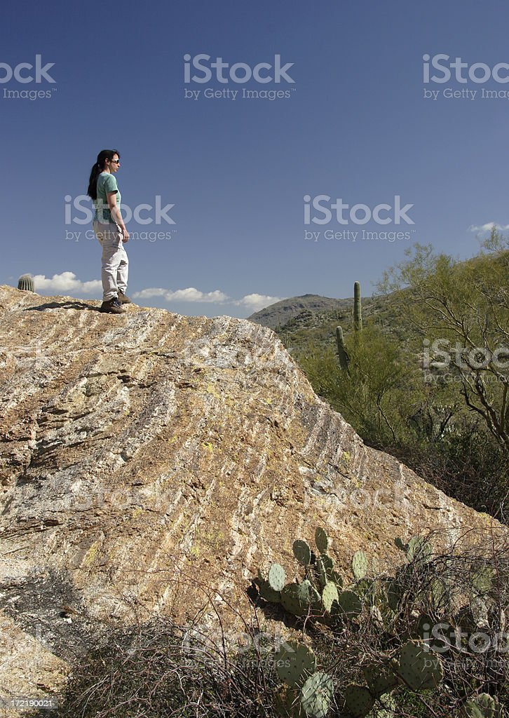 Hiker Overlooking Saguaro National Park royalty-free stock photo