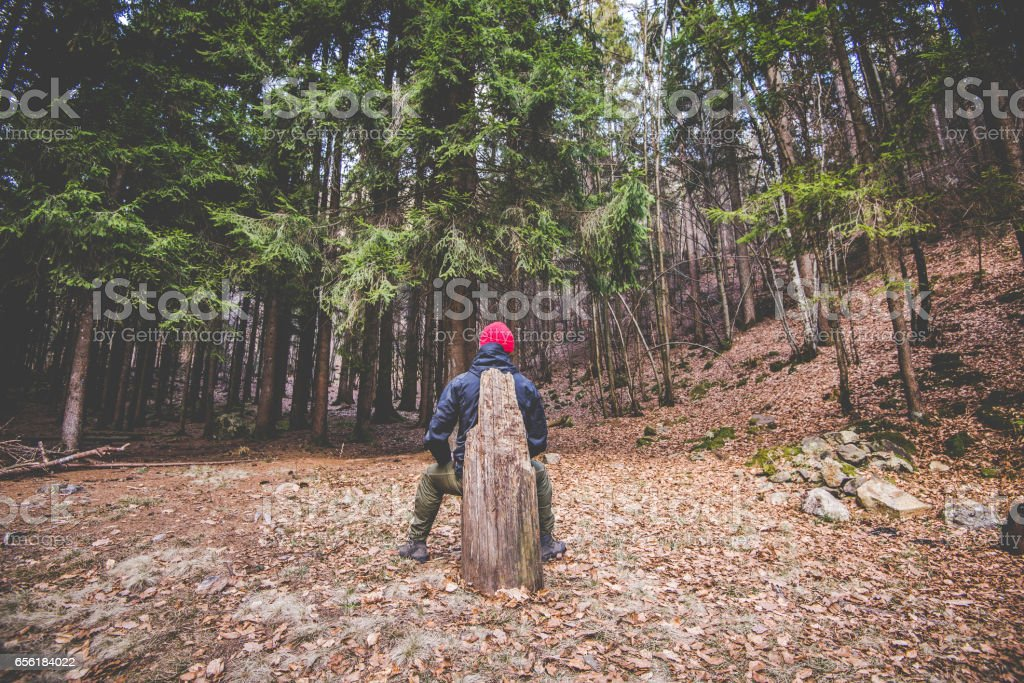hiker resting and contemplates trees in the woods - wanderlust travel concept with sporty people at excursion in wild nature - outdoor activity italian Alps Italy stock photo
