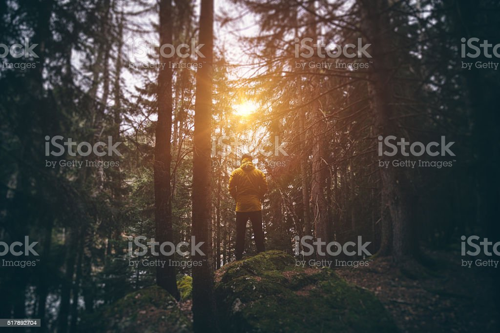 Hiker stands in the woods and looking on the sun stock photo