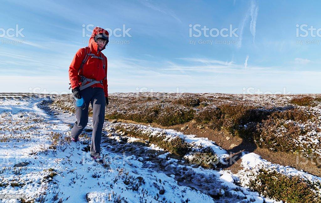 Hiker walking over the moors in winter. stock photo