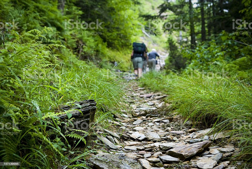Hikers hiking uphill on trail in the Smoky Mountains stock photo
