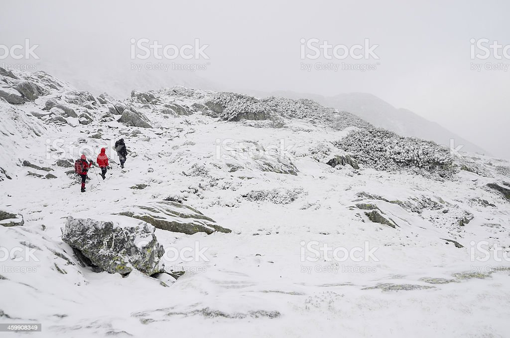 Hikers in a snow storm royalty-free stock photo