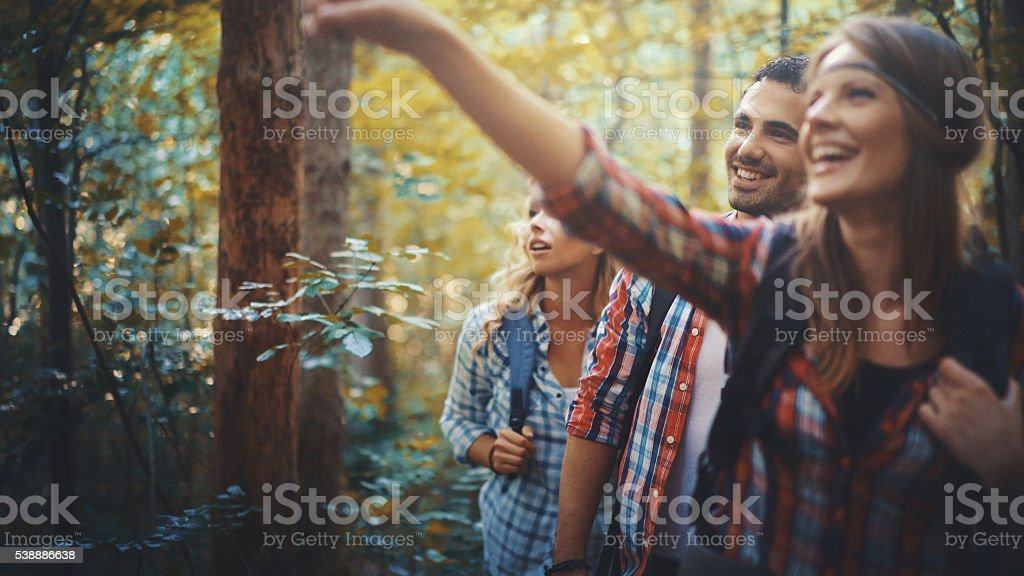 Hikers in forest. stock photo