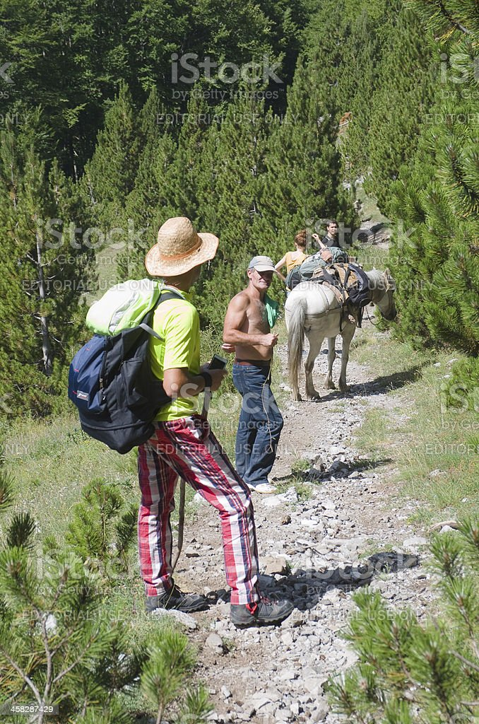 Hikers On The Path With Horse royalty-free stock photo