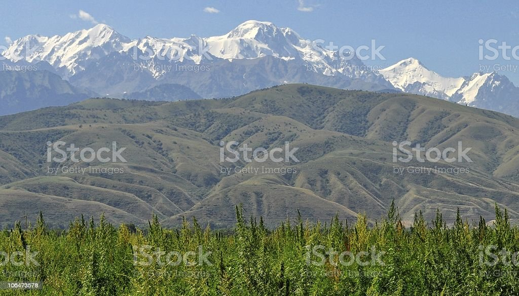 Buty's raju: Magnificient Azji Środkowej Mountainscape zbiór zdjęć royalty-free
