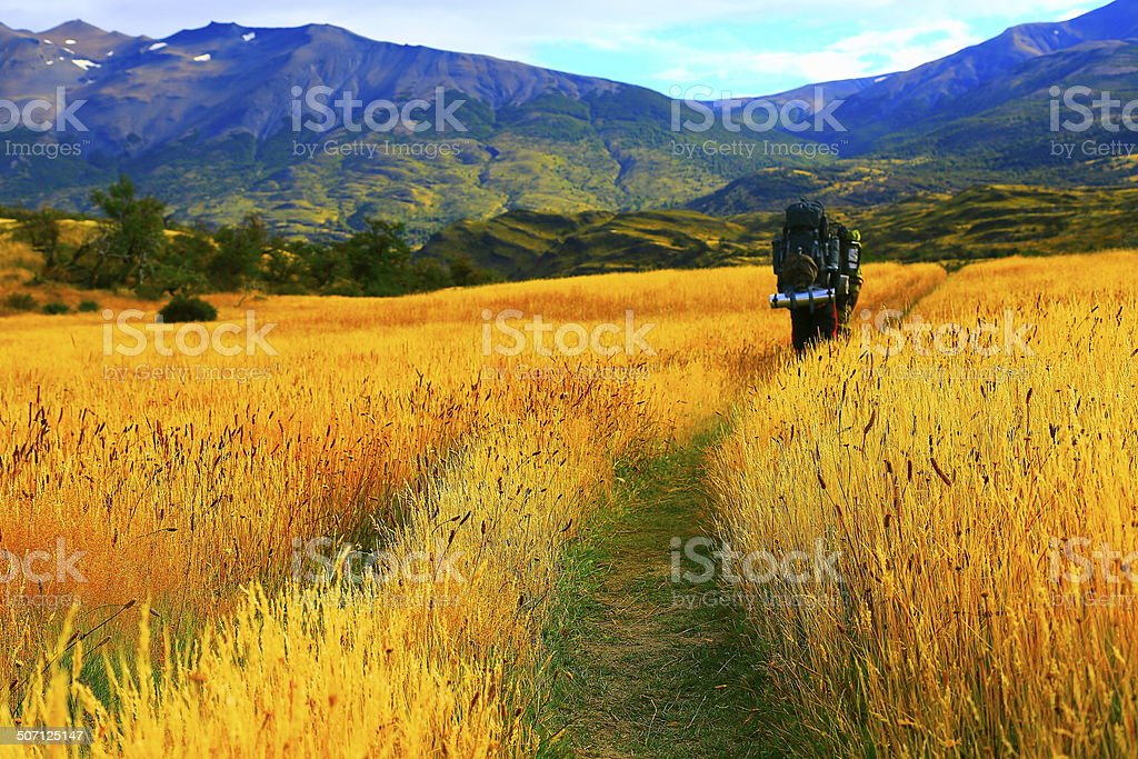 Hikers walking in Patagonia, Torres Del Paine, Chile stock photo