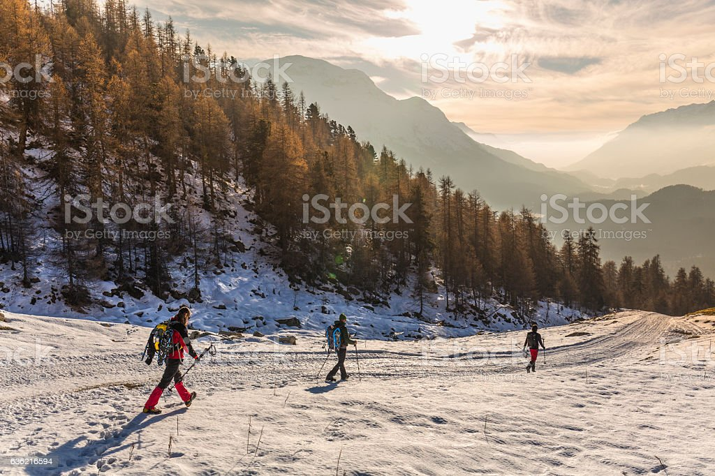 Hikers walking on snow covered road in high mountain forest stock photo