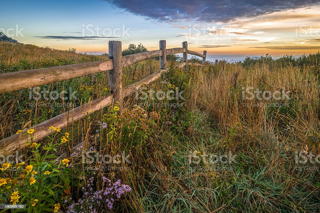 Hiking along the Appalachian Trail at Roan Mountain stock photo
