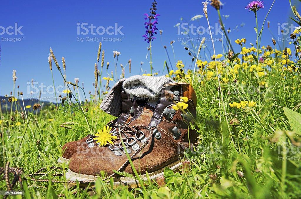 Hiking Alps stock photo