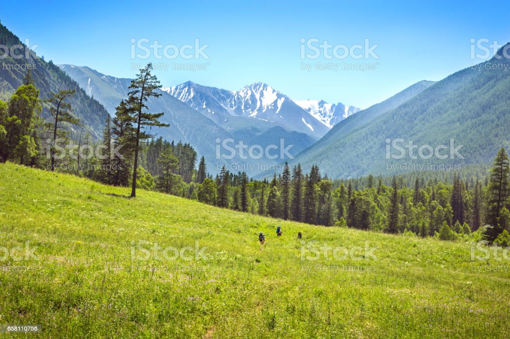Hiking family with backpack stock photo
