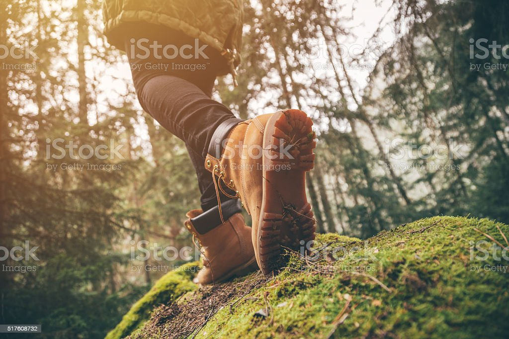 Hiking in a forest. stock photo