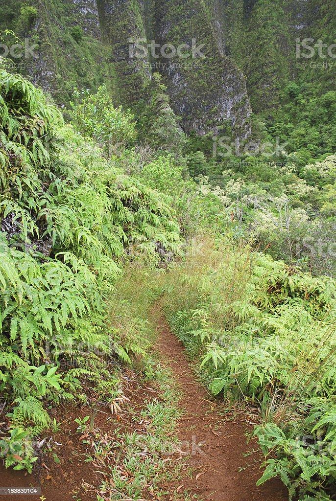 Hiking in Hawaii Islands royalty-free stock photo