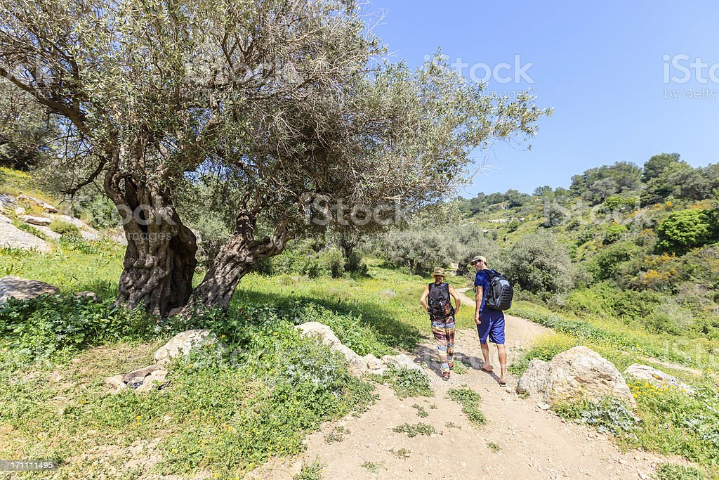 Hiking in Israel royalty-free stock photo