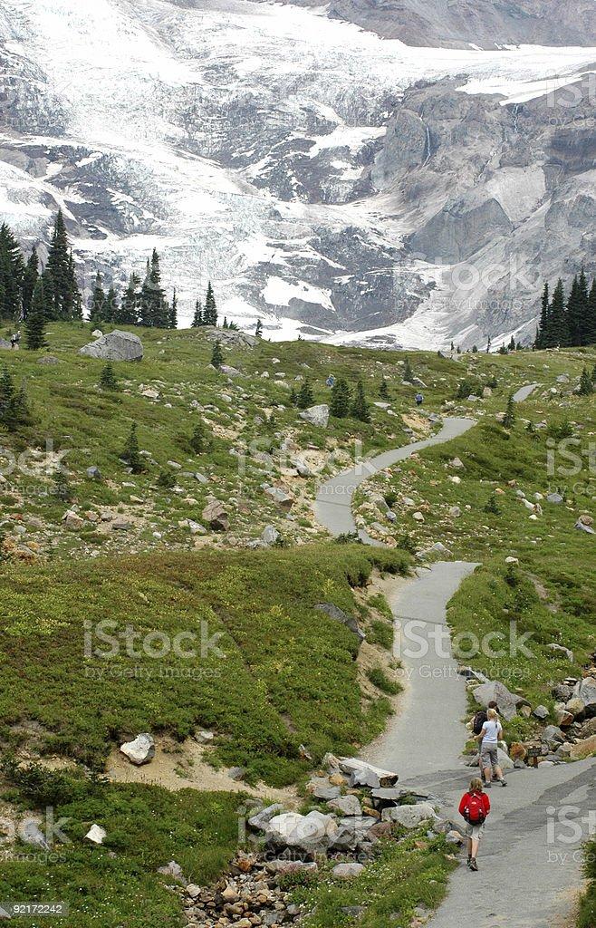 Hiking in Mount Ranier royalty-free stock photo