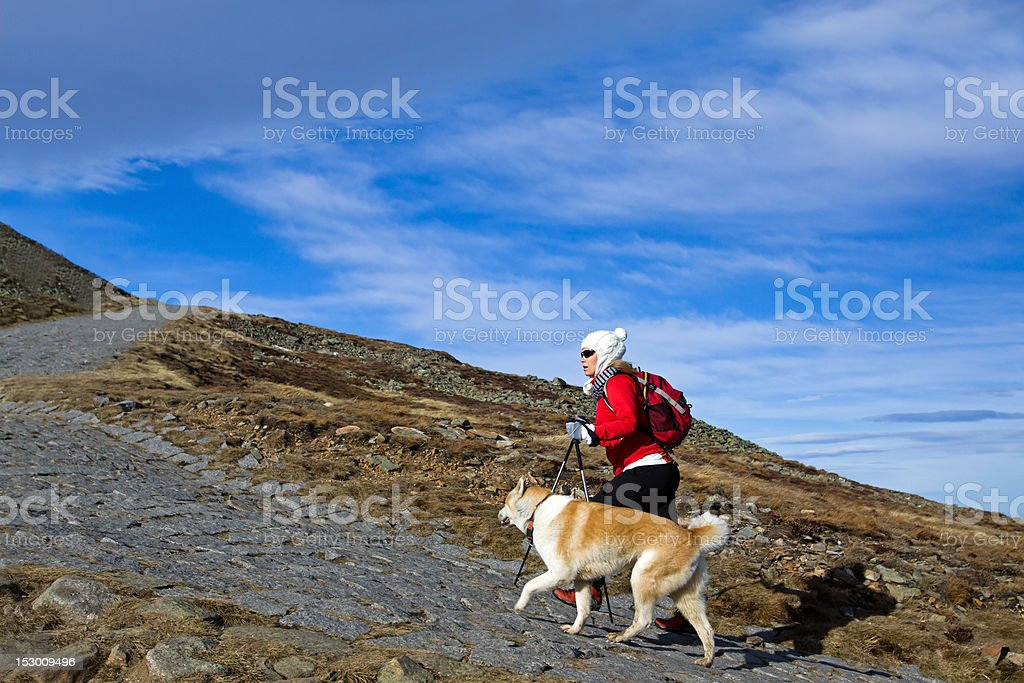 Hiking in mountains with a dog royalty-free stock photo