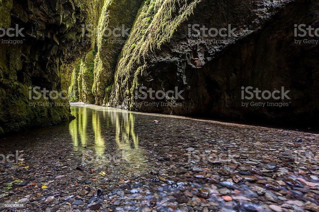 Hiking in Oneonta Gorge trail, Oregon. stock photo