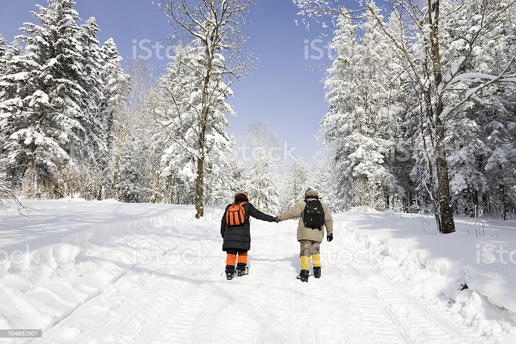 Hiking in snowy forest. royalty-free stock photo