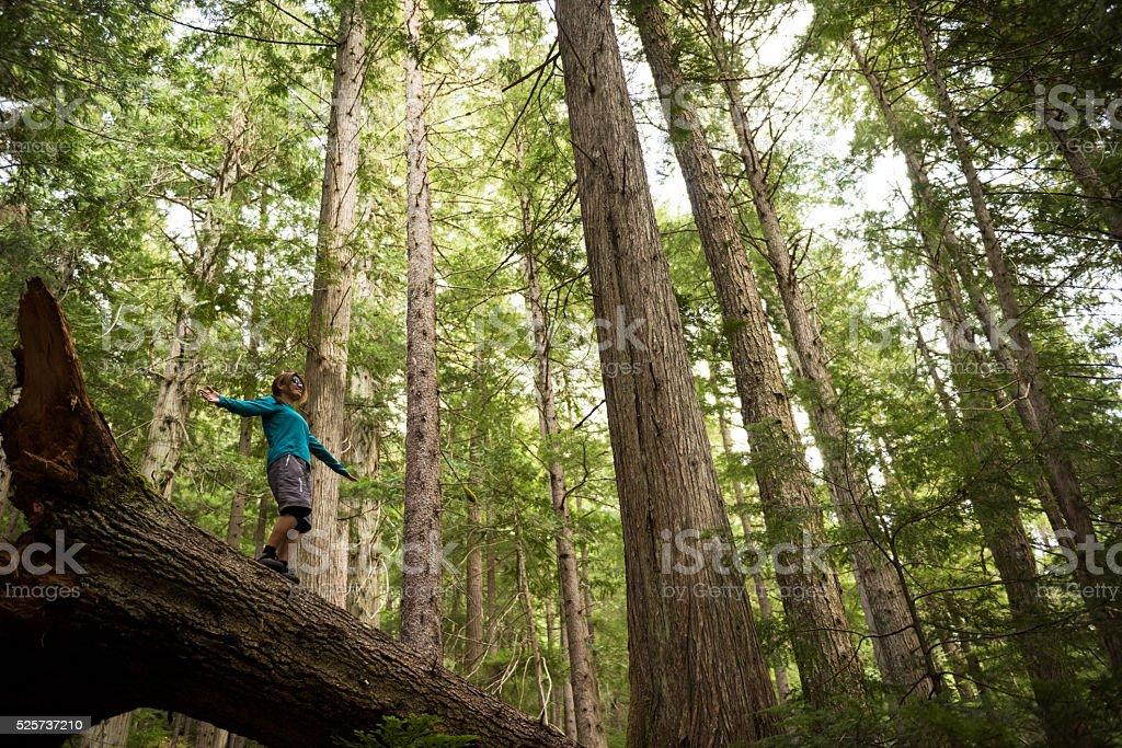 Hiking in stunning nature stock photo