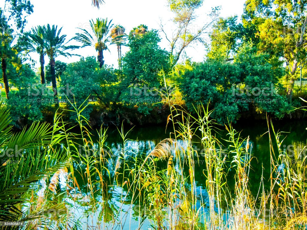 Hiking in the nature around Jerusalem in Israel stock photo