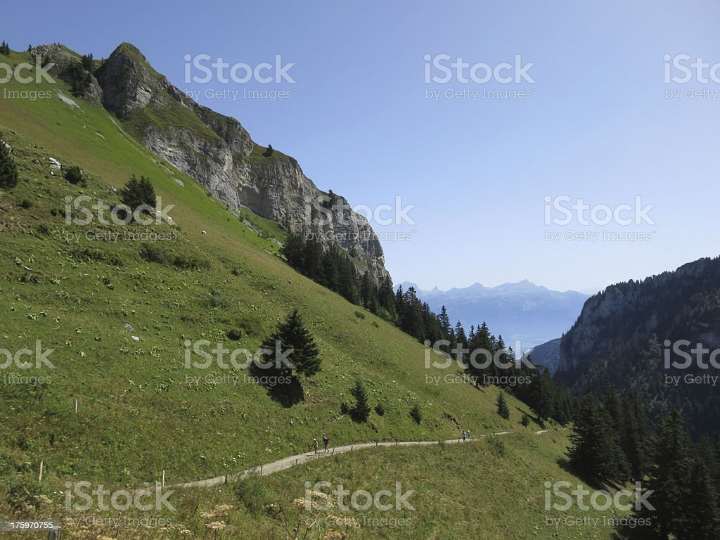 Hiking in the Swiss Alps royalty-free stock photo