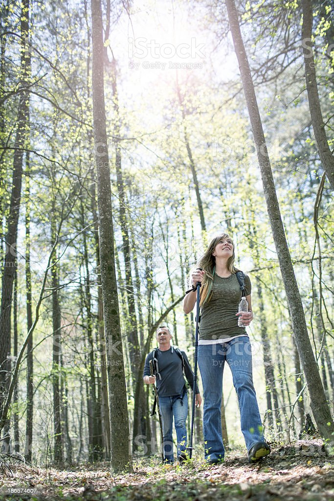 Hiking in the woods royalty-free stock photo