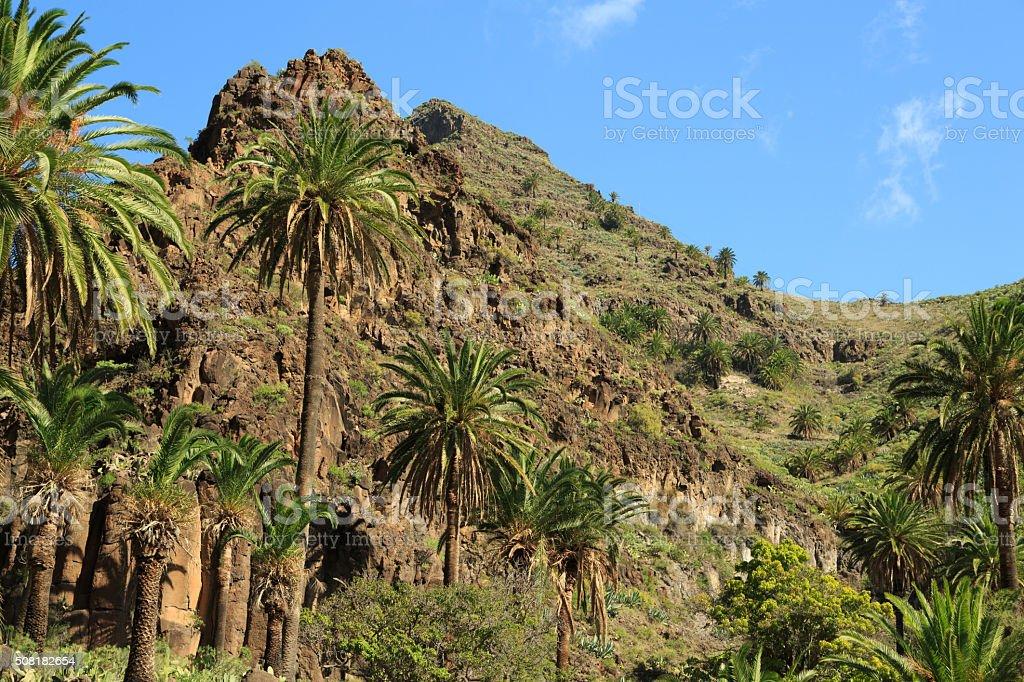 Hiking in Valle Gran Rey stock photo