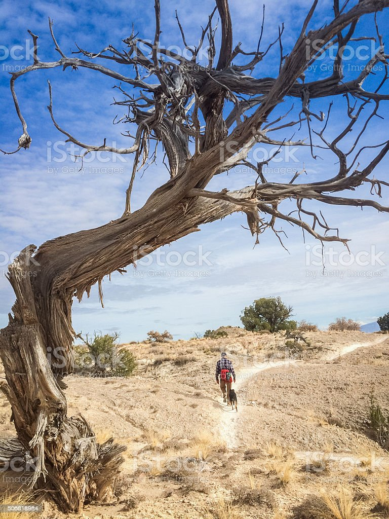 hiking man and dog stock photo