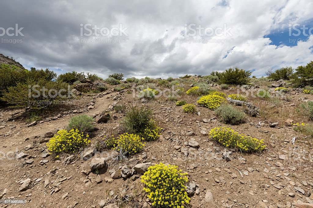 Hiking path at the top of a mountain stock photo