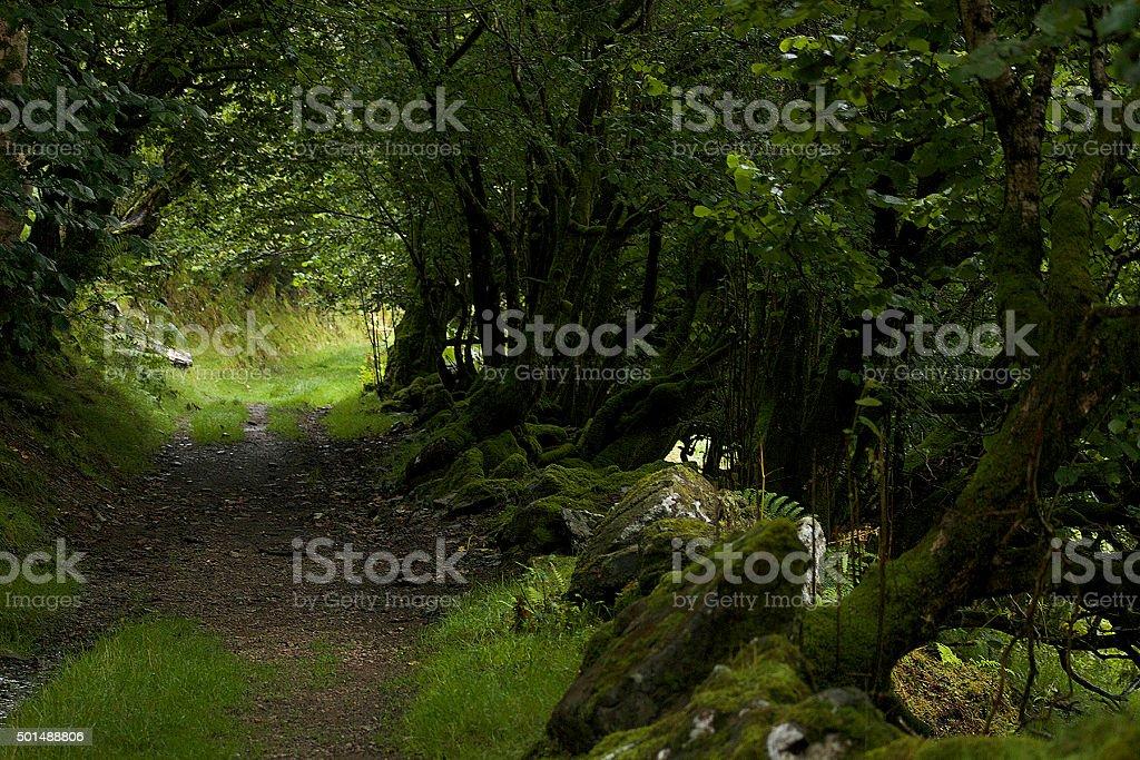 Percorso per escursioni in Galles foto stock royalty-free