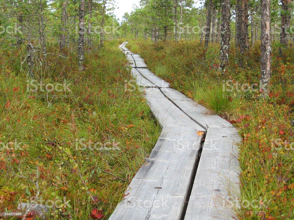 Hiking path royalty-free stock photo