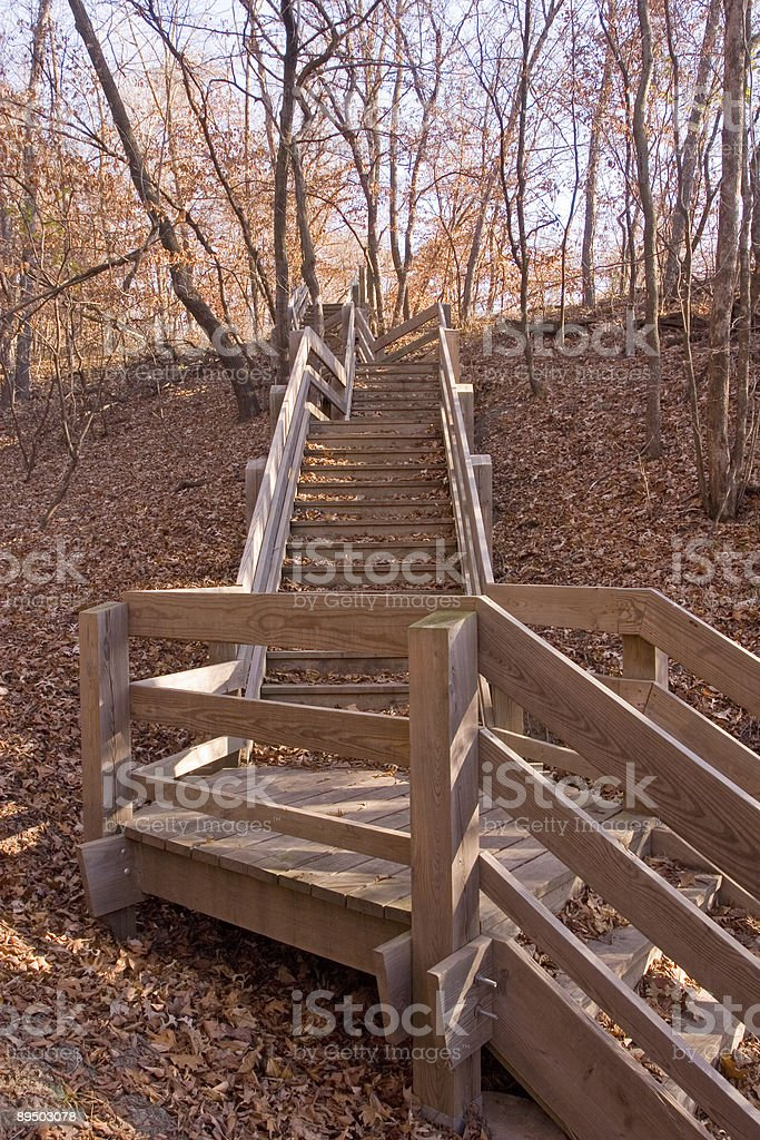 Hiking Path Stairs royalty-free stock photo