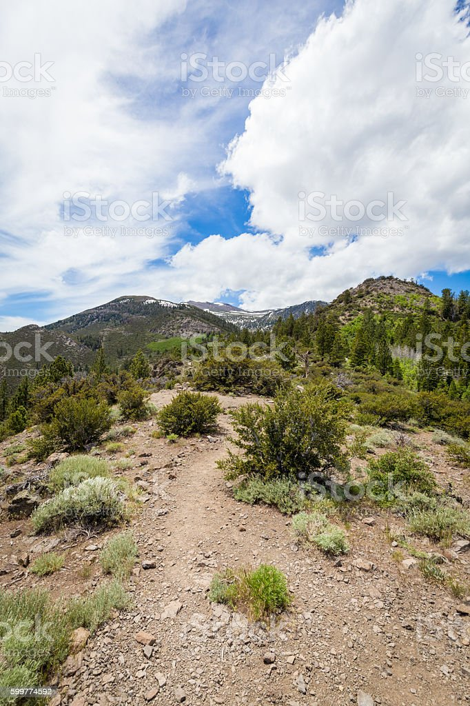 Hiking path to Church's Pond in Galena Forest stock photo
