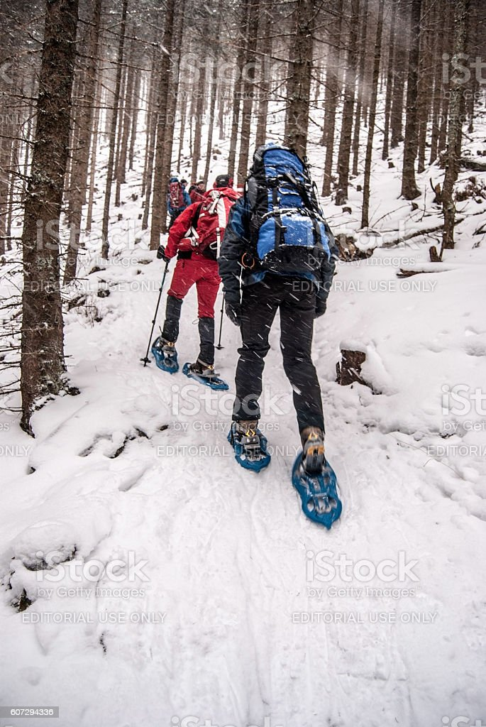 hiking people on snowshoes in forest bellow Stuhleck stock photo