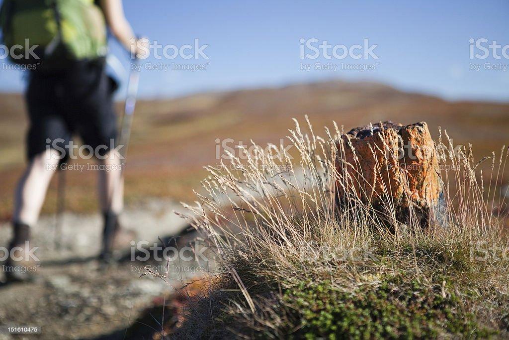 Hiking Sign on the Padjelantaleden in Sweden stock photo