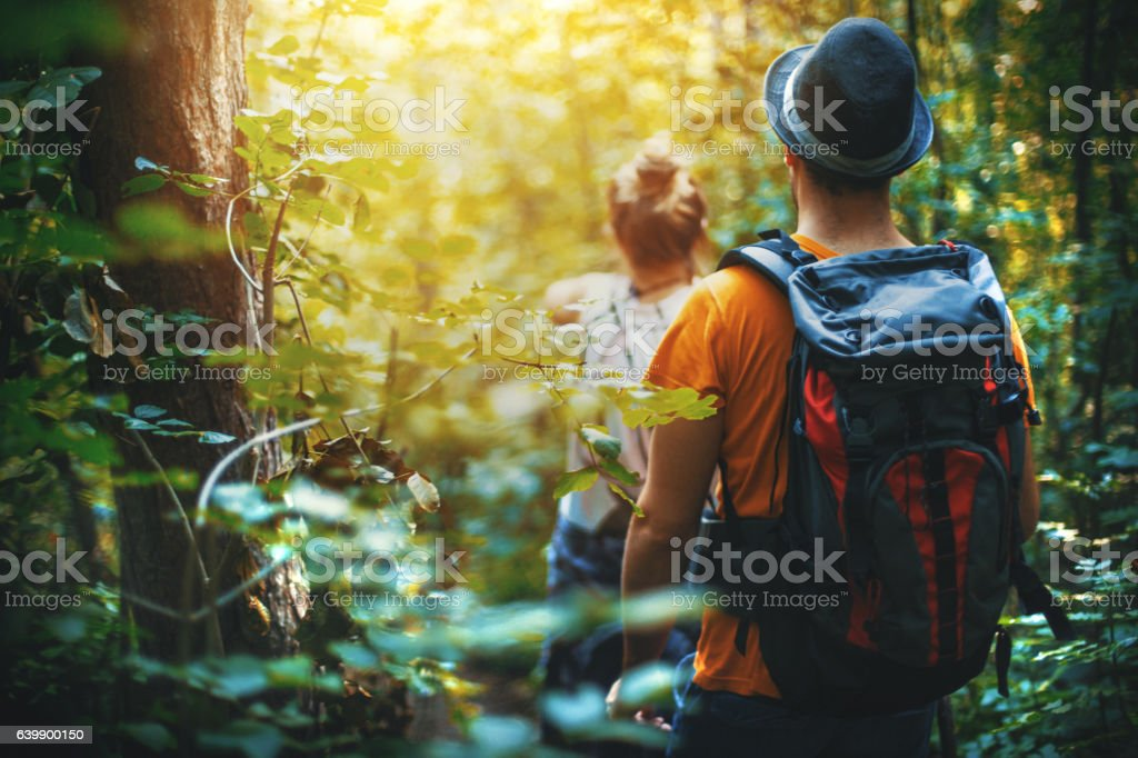 Hiking through a forest. stock photo