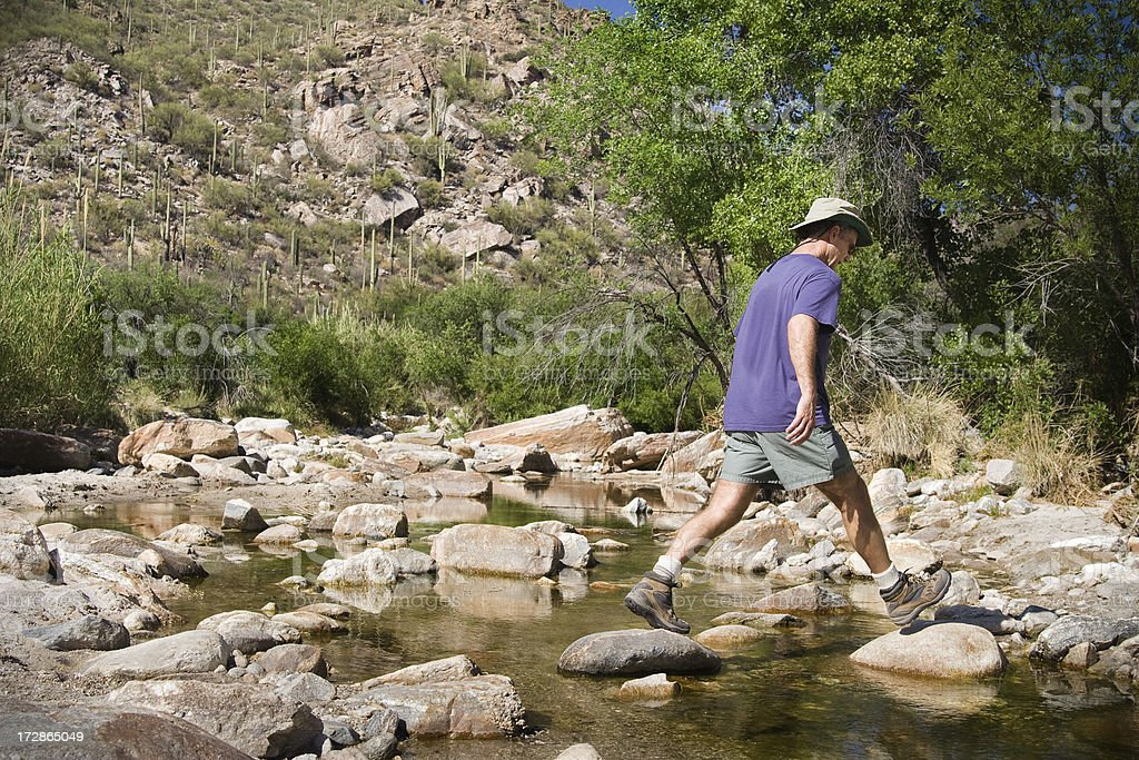 Hiking Through Hot Desert Forest stock photo