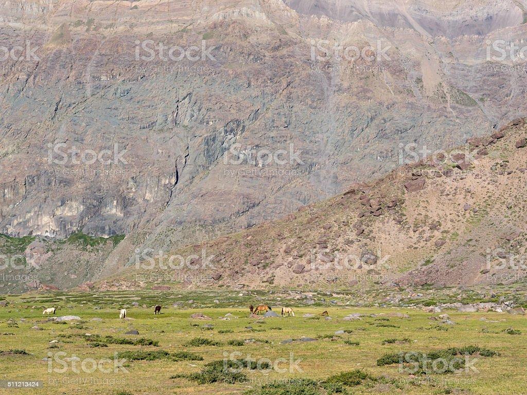 Hiking to the Vulkan San Jose royalty-free stock photo