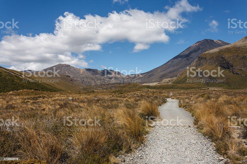 hiking track in Tongariro National Park stock photo