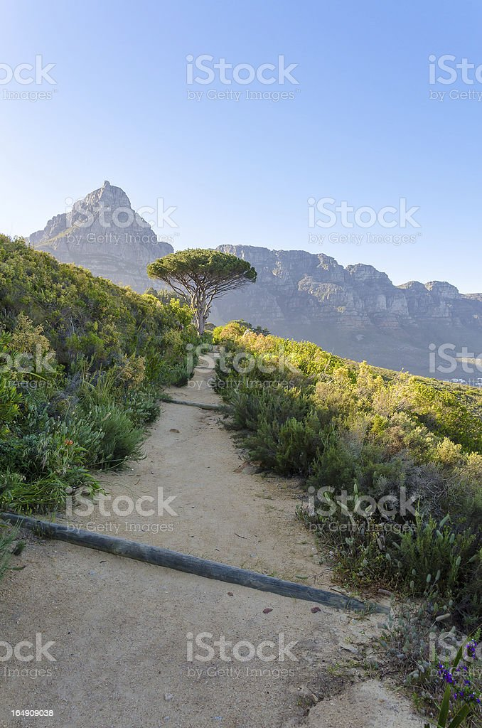 Hiking Trail along Lion's Head Mountain stock photo