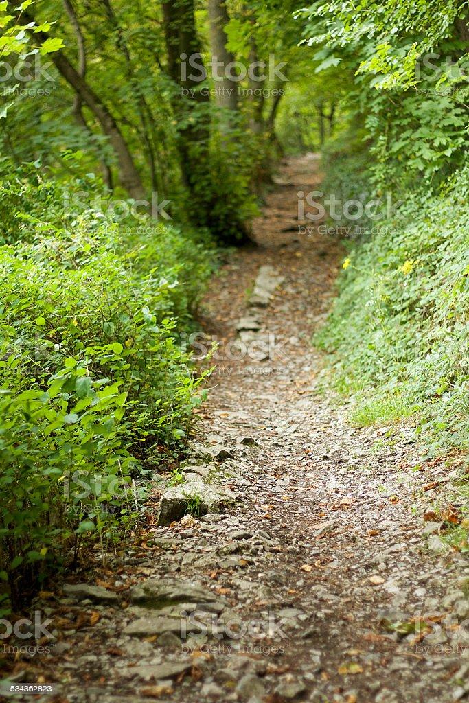 Hiking trail, Dinant foto stock royalty-free