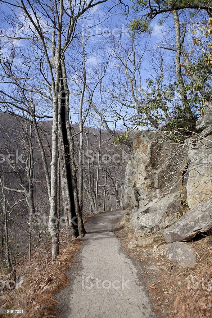 Hiking Trail in Great Smoky Mountains National Park royalty-free stock photo