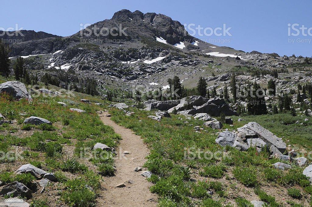 Hiking Trail in Mokelumne Wilderness royalty-free stock photo