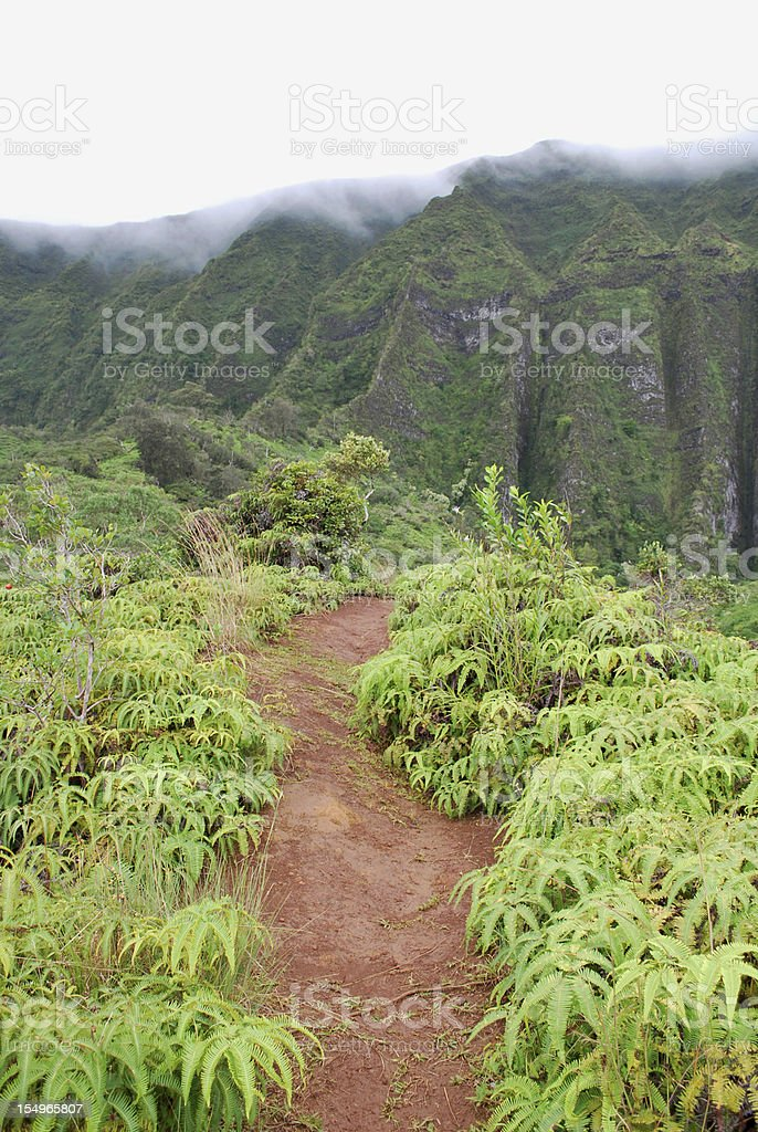 Hiking Trail in Oahu, Hawaii royalty-free stock photo