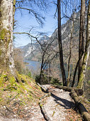 Hiking trail in the Bavarian Alps with lake Koenigssee in the background