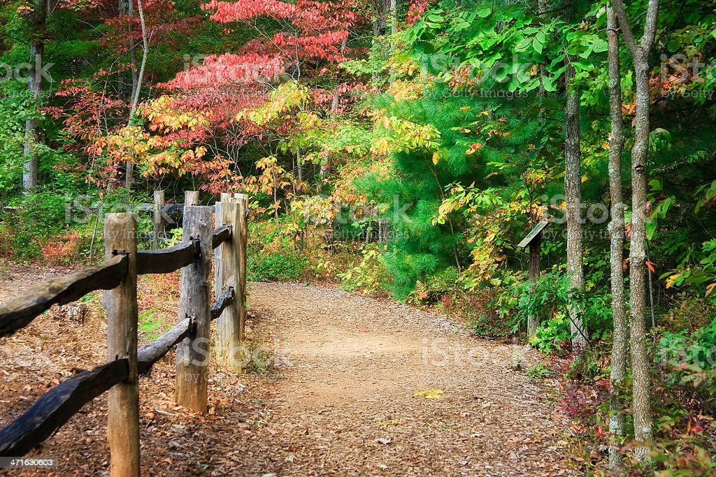 Hiking Trail in the Fall royalty-free stock photo
